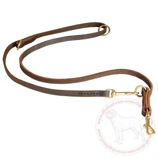 Leather dog leash multi functional