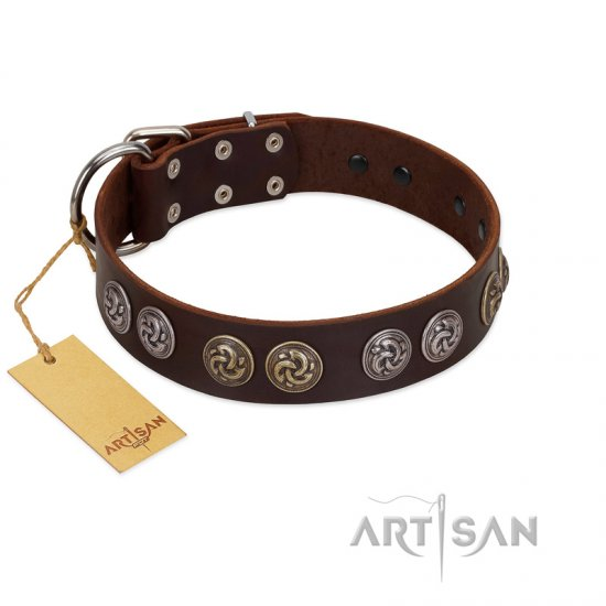 """Treasure Hunter"" FDT Artisan Brown Leather Cane Corso Collar with Old-Bronze-like and Silvery Medallions"
