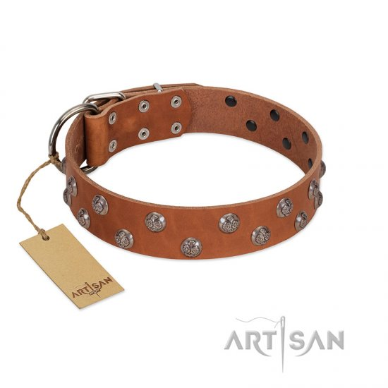"""Waltz of the Flowers"" Handmade FDT Artisan Tan Leather Cane Corso Collar with Chrome-plated Engraved Studs"