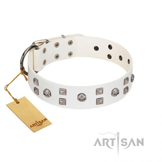 """Rock the Sky"" Durable FDT Artisan White Leather Cane Corso Collar with Chrome-plated Decorations"