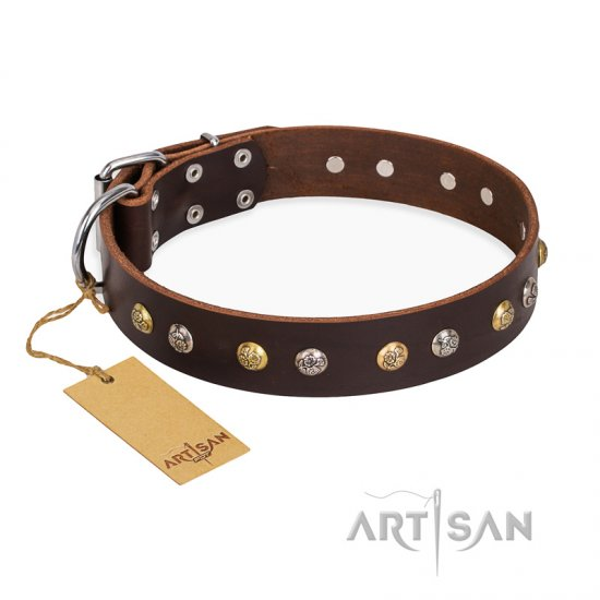 """Rare Flower"" FDT Artisan Brown Leather Cane Corso Collar Adorned with Old-look Hemisphere Studs"