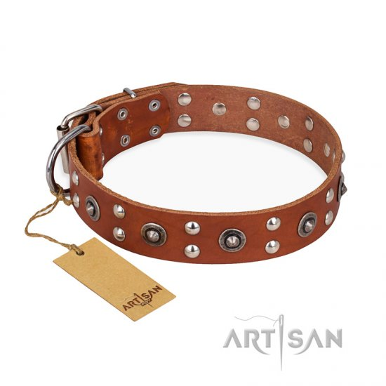 """Silver Elegance"" FDT Artisan Decorated Leather Cane Corso Collar with Old Silver-Like Plated Studs and Cones"