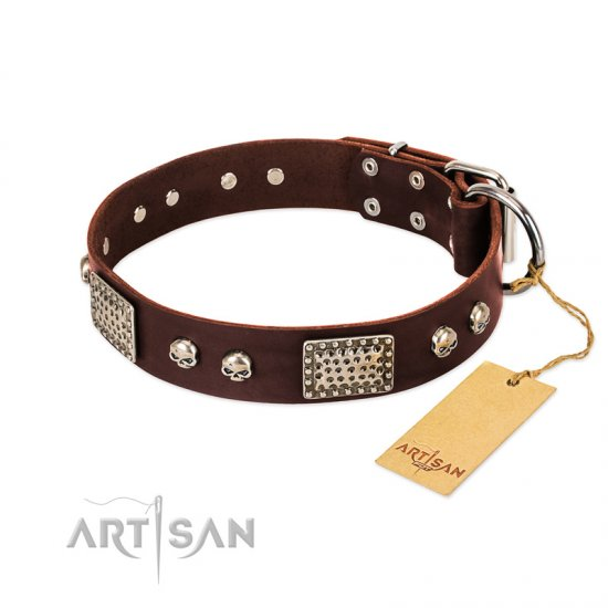 """Pirate Skull"" FDT Artisan Brown Leather Cane Corso Collar with Old Silver Look Plates and Skulls"