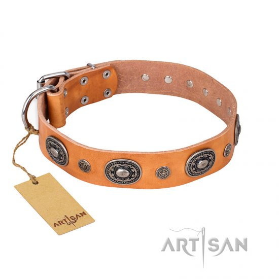 """Twinkle Twinkle"" FDT Artisan Incredible Studded Tan Leather Cane Corso Collar"