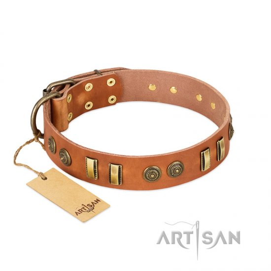 """Natural Beauty"" FDT Artisan Tan Leather Cane Corso Collar with Old Bronze-like Circles and Plates"