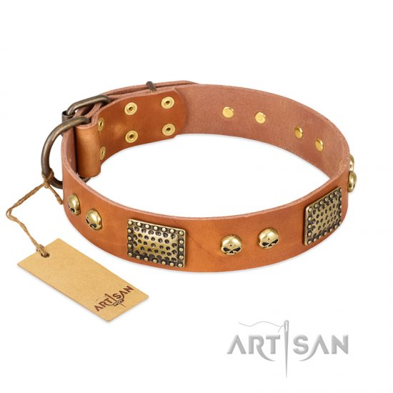 """Saucy Nature"" FDT Artisan Tan Leather Cane Corso Collar with Old Bronze Look Plates and Skulls"