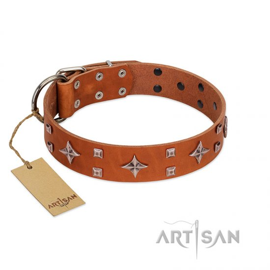 """Tawny Beauty"" FDT Artisan Tan Leather Cane Corso Collar Adorned with Stars and Tiny Squares"