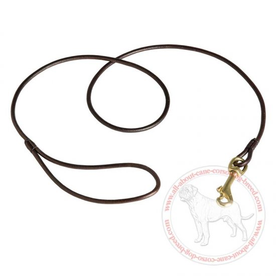Rounded Leather Cane Corso Leash for Dog Shows