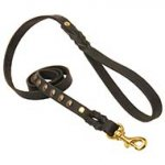 Studded Leather Dog Leash for Cane Corso