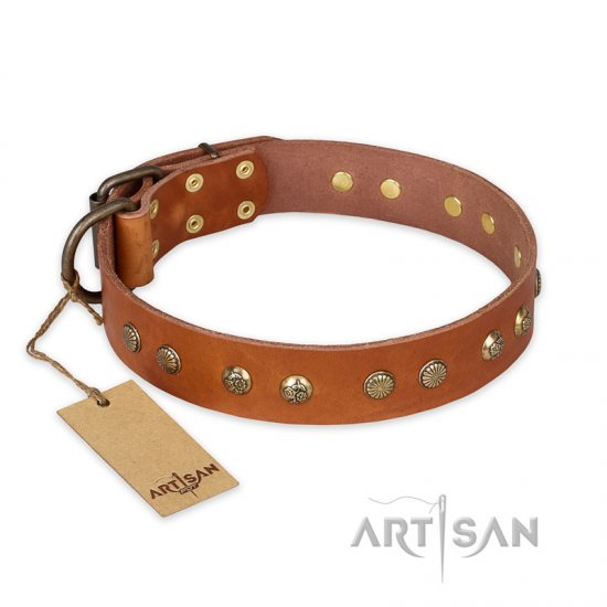 """Spring Flavor"" FDT Artisan Adorned Leather Cane Corso Collar with Old Bronze-Plated Engraved Studs"