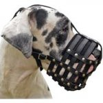 Well-Ventilated Leather Basket Dog Muzzle for the Great Dane