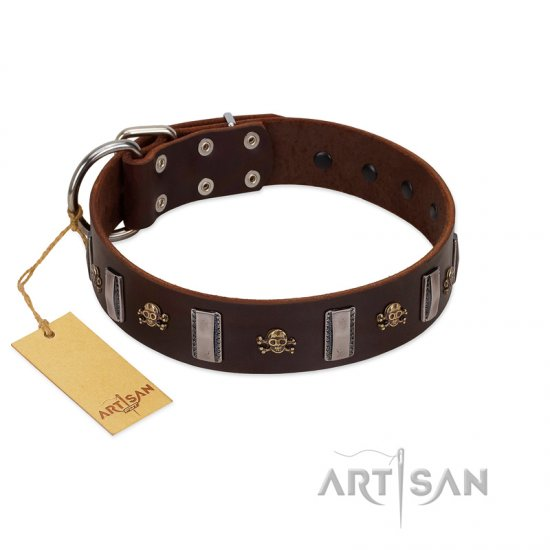 """War Chief"" FDT Artisan Genuine Brown Leather Cane Corso Collar with Skulls and Plates"