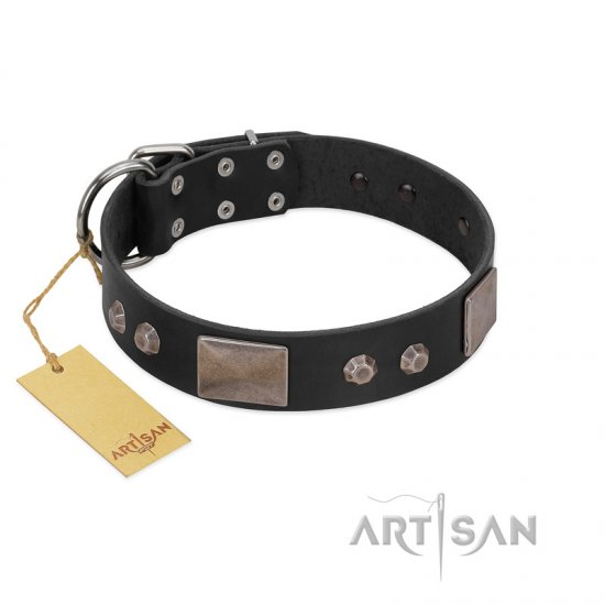 """Square Stars"" Modern FDT Artisan Black Leather Cane Corso Collar with Square Plates and Studs"
