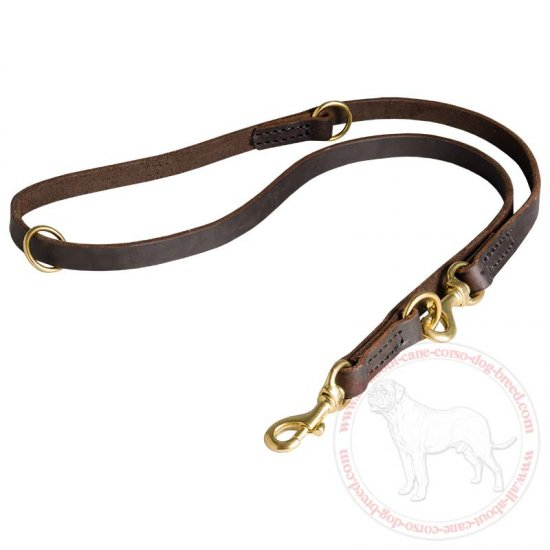 Leather Dog Slip Leash for Different Activities