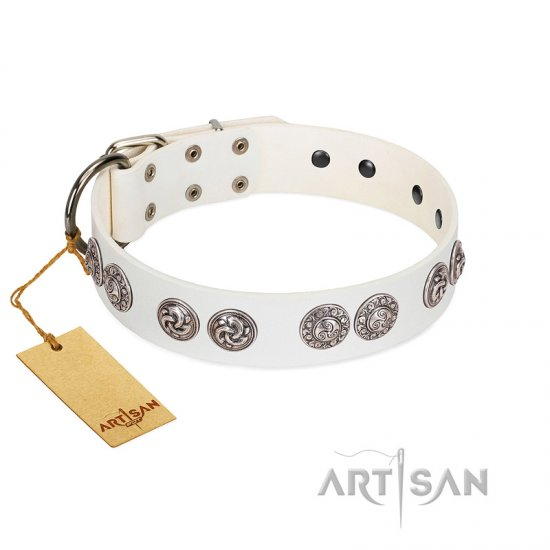 """Eye Candy"" Appealing FDT Artisan White Leather Cane Corso Collar with Chrome Plated Medallions"
