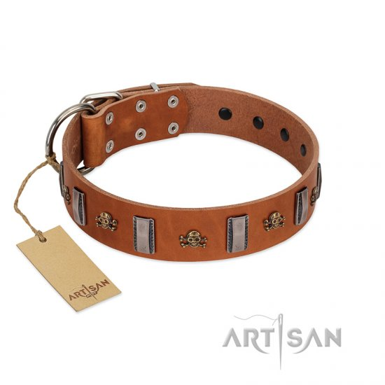 """Golden Crossbones"" Handmade FDT Artisan Tan Leather Cane Corso Collar with Plates and Skulls"