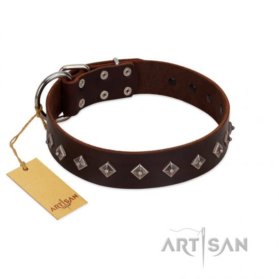"""Boundless Energy"" Premium Quality FDT Artisan Brown Designer Leather Cane Corso Collar with Small Pyramids"
