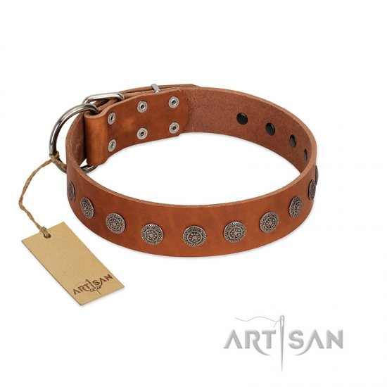 """Lucky Star"" Handmade FDT Artisan Designer Tan Leather Cane Corso Collar with Round Plates"