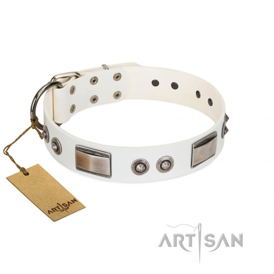 """Good-Luck Piece"" FDT Artisan White Cane Corso Collar Adorned with Chrome Plated Studs and Plates"