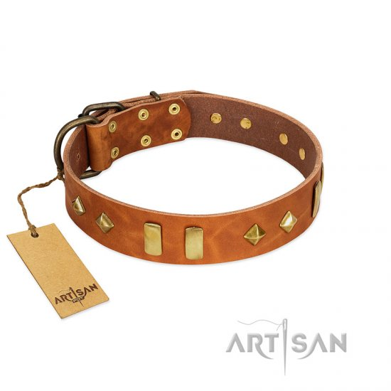 """Woofy Dawn"" FDT Artisan Tan Leather Cane Corso Collar with Plates and Rhombs"