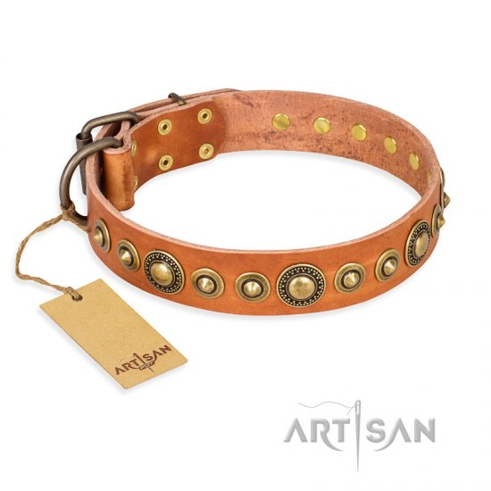 """Feast of Luxury"" FDT Artisan Tan Leather Cane Corso Collar with Old Bronze Look Circles"