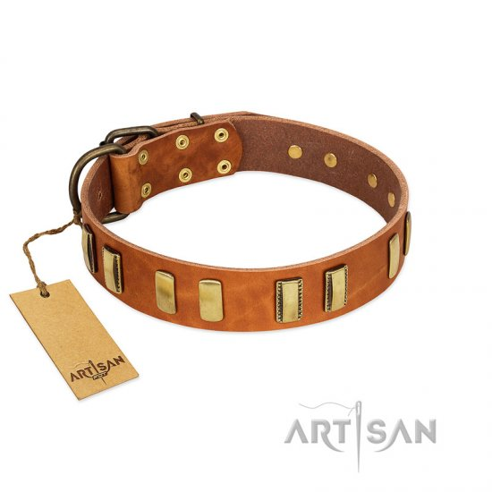 """Olive Slice"" FDT Artisan Tan Leather Cane Corso Collar with Engraved and Smooth Plates"