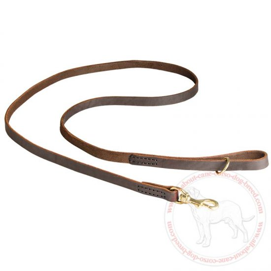 Stitched Leather Dog Leash for Cane Corso