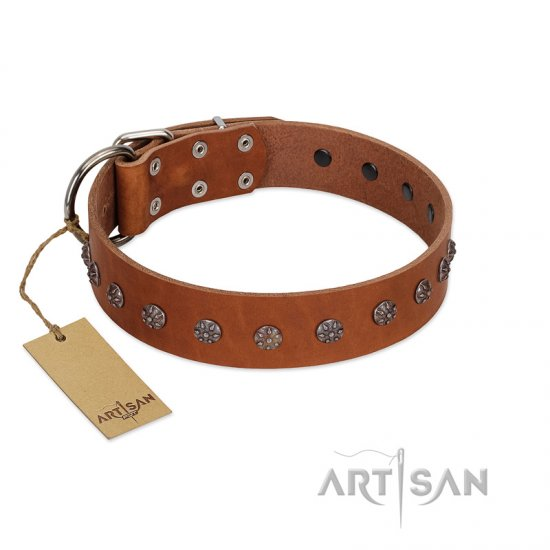 """Daintiness"" Designer Handmade FDT Artisan Tan Leather Cane Corso Collar with Silver-Like Adornments"
