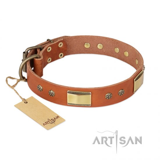 """Enchanting Spectacle"" FDT Artisan Tan Leather Cane Corso Collar with Old Bronze Look Plates and Round Studs"