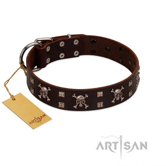 """Menacing Allure"" FDT Artisan Brown Leather Cane Corso Collar Embellished with Silvery Crossbones and Square Studs"