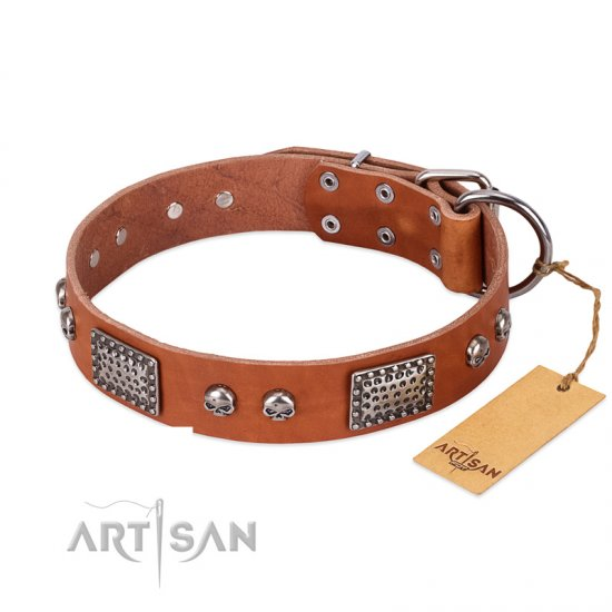 """Sparkling Skull"" FDT Artisan Tan Leather Cane Corso Collar with Old Silver Look Plates and Skulls"