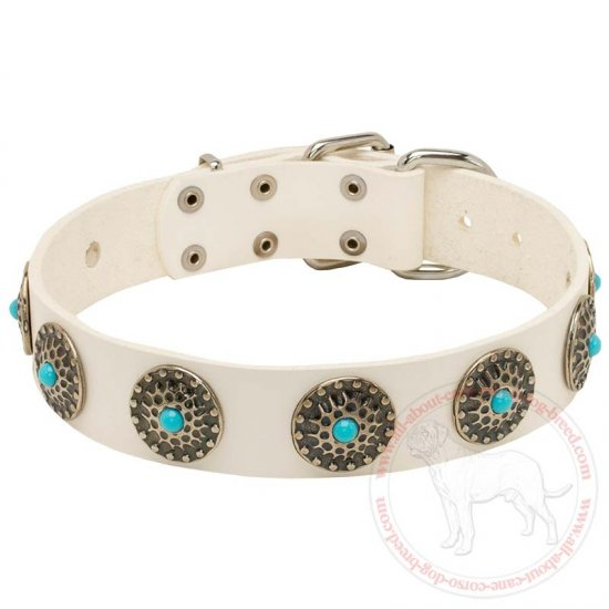 Fashion White Leather Cane Corso Collar with Blue Stones for Wallking