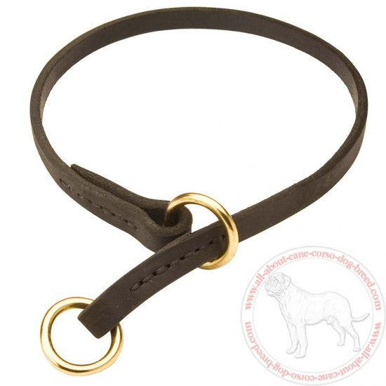 Training Leather Cane Corso Choke Collar