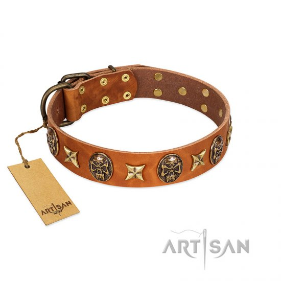 """Rockin' Doggie"" FDT Artisan Tan Leather Cane Corso Collar Adorned with Stars and Skulls"