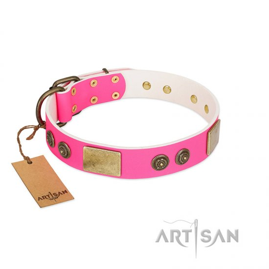 """Queen's Whim"" FDT Artisan Fancy Walking Pink Leather Cane Corso Collar Adorned with Old Bronze-like Plates and Studs"