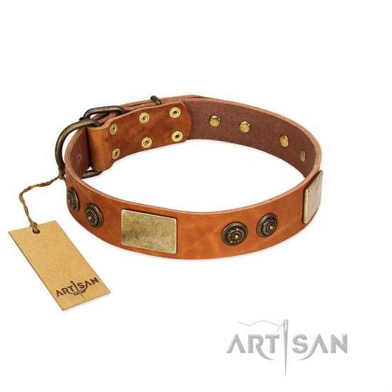 """Bronze Century"" FDT Artisan Tan Leather Cane Corso Collar with Plates and Brooches with Cool Ornament"