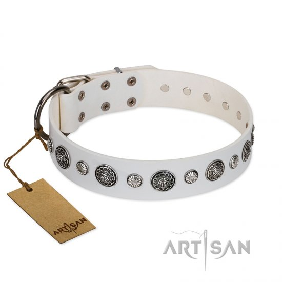 """Fluff-Stuff Beauty"" FDT Artisan White Leather Cane Corso Collar with Silver-like Studs and Conchos"