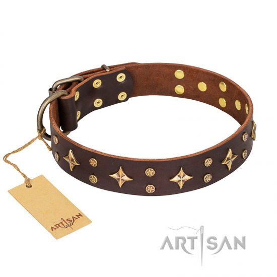 'High Fashion' FDT Artisan Embellished Brown Leather Cane Corso Collar