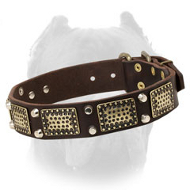 Charming Vintage Leather Cane Corso Collar with Plates and Pyramids