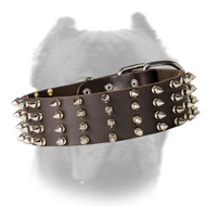 2 Inch Wide Walking Leather Spiked Dog Collar for Cane Corso