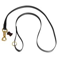Any Weather Nylon Cane Corso Leash for Tracking, Training, Walking and Patrolling