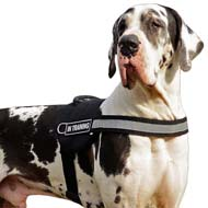 Multifunctional Nylon Dog Harness with Reflective Front Strap for Great Dane