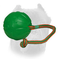 Rotating Chew Dog Ball for Cane Corso