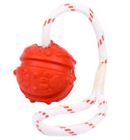 Similar to Everlasting Fun Ball on a Rope for Cane Corso