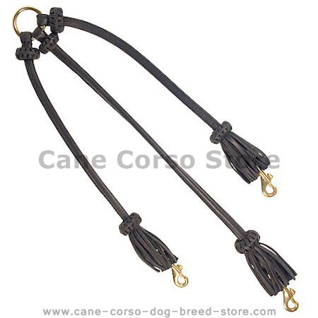 Triple Leather Cane Corso Coupler for Walking 3 Dogs