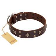 """Stars in Sands"" Modern FDT Artisan Brown Leather Cane Corso Collar with Studs and Stars"