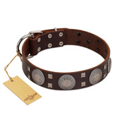 """Sun in Barchans"" Modern FDT Artisan Brown Leather Cane Corso Collar with Engraved Stars on Round Plates and Studs"