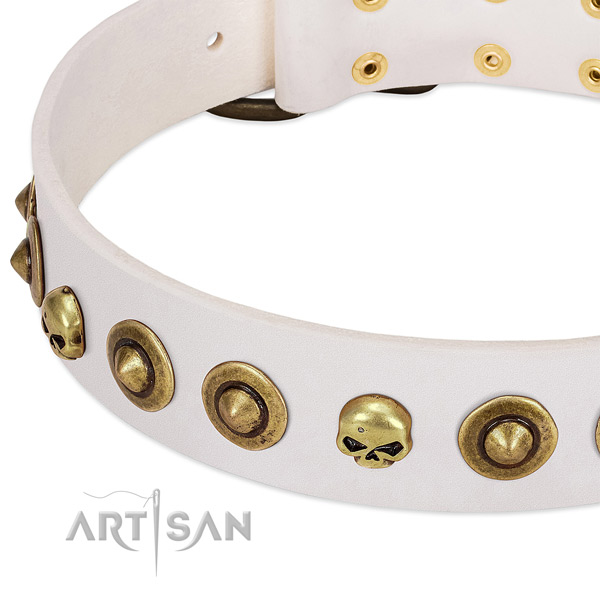 Exceptional embellishments on full grain genuine leather collar for your pet