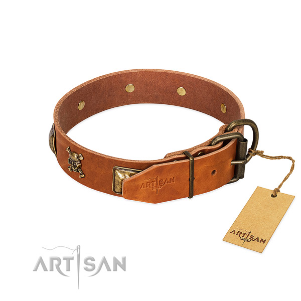 Stylish full grain natural leather dog collar with corrosion proof adornments
