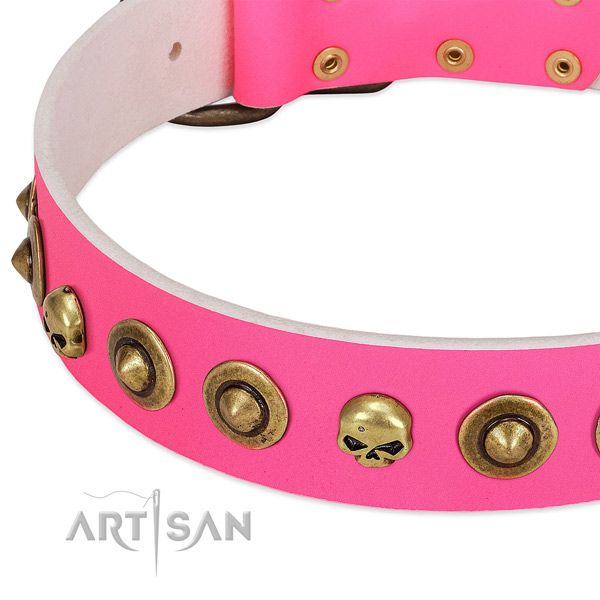 Significant adornments on genuine leather collar for your pet